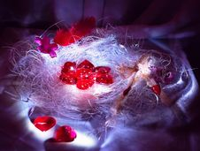 Free Hearts Are In A Nest Royalty Free Stock Photography - 8033567