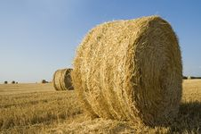Free Straw Roll Stock Photos - 8037143
