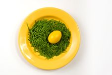 Free Yellow Easter Egg On Yellow Plate Royalty Free Stock Photo - 8038035