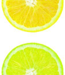 Free Coloured Orange Slince Royalty Free Stock Photo - 8038555