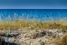 Free Italian Summer In Sardinia Royalty Free Stock Photography - 8038837