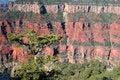 Free Grand Canyon National Park, USA Stock Photo - 8045870