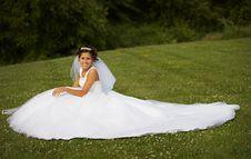 Free The Bride Stock Photos - 8040983