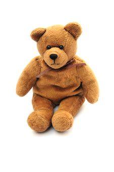 Free Cute Bear Stock Photos - 8041603