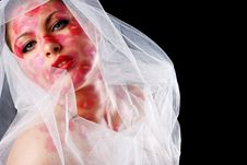 Free Woman And Veil Stock Image - 8042091