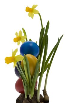 Free Easter Eggs With Yellow Narcissus Royalty Free Stock Photos - 8043668