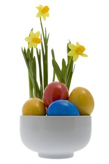 Free Easter Eggs With Yellow Narcissus Stock Image - 8043671