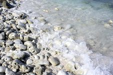 Free Grey Coral Stones And Water Royalty Free Stock Images - 8045499