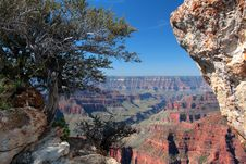 Free Grand Canyon National Park, USA Royalty Free Stock Photo - 8046015
