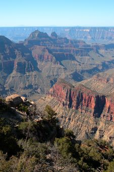 Free Grand Canyon National Park, USA Royalty Free Stock Image - 8046076