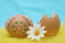 Free Easter Royalty Free Stock Photo - 8047315