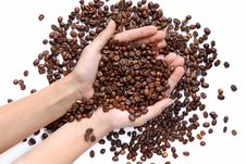 Free Coffee Beans In Hands Royalty Free Stock Photography - 8048107