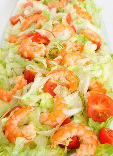 Free Shrimp Salad Stock Photos - 8049233