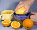 Free Fresh Oranges And Orange Juice Stock Photo - 8052020