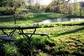 Free Picnic Table Stock Image - 8053081