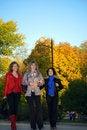 Free Three Girlfriends Royalty Free Stock Photos - 8054468