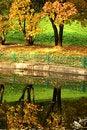 Free Autumn Park 10 Stock Images - 8056164
