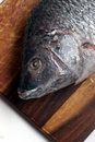 Free Fish Close-up Stock Photo - 8059950