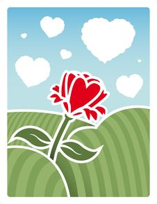 Free Field Of Love Royalty Free Stock Image - 8051076