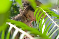 Free Young Couple In The Green Bushes Stock Images - 8052094