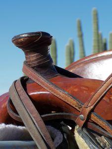 Free Saddle Horn Royalty Free Stock Photography - 8053127