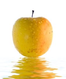 Free Big Yellow Apple Stock Photos - 8055143