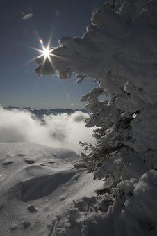 Free Snowy Landsccape, Sunshine Royalty Free Stock Image - 8055316