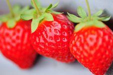 Free Strawberry Royalty Free Stock Photos - 8055408