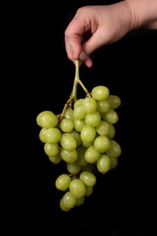 Free Grapes Royalty Free Stock Photo - 8055595