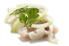 Free Herring With Cut Onion Stock Image - 8055881