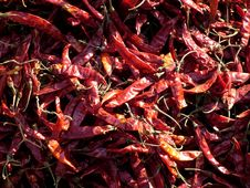 Free Dry Red Chilli Masala Stock Photos - 8056083