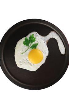 Free Egg Stock Photo - 8058080