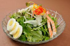Free Salad Stock Photos - 8058093