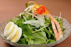 Free Salad Royalty Free Stock Photos - 8058098