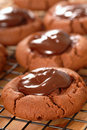 Free Cocao Cookies Stock Images - 8063934
