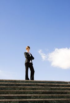 Free Businesswoman On Top Stock Photo - 8060130