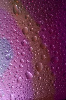 Free Water Drops Stock Image - 8060811