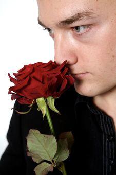 Free Rose Man Portrait Stock Photo - 8062020