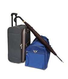 Travel Bags And Umbrella Stock Images