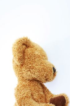 Side View Bear Stock Image
