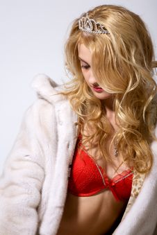 Free Glamour Winter Stock Images - 8066864