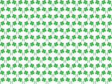 Free Clovers Stock Photography - 8067802