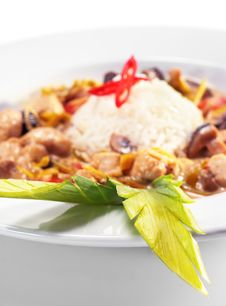 Free Braised Chicken Slice With Rice Heap Stock Photography - 8068432