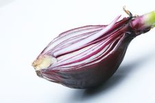 Free Red Onion Royalty Free Stock Images - 8069009