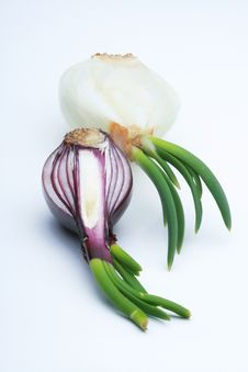 Free Onions Royalty Free Stock Image - 8069036
