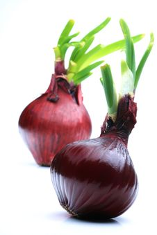 Free Red Onions Royalty Free Stock Photography - 8069327