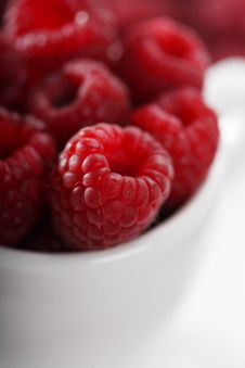 Free Raspberry Stock Photos - 8069373