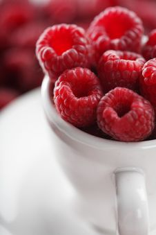 Free Raspberry Stock Photography - 8069382