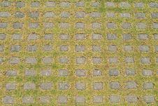Free Square Grid Ground Royalty Free Stock Photo - 8069715