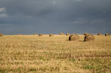 Free Field And The Sky Before A Thunder-storm Stock Photography - 8071032